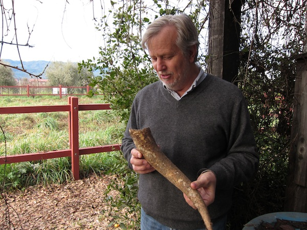 John Williams with a cow's horn for Biodynamic preparations